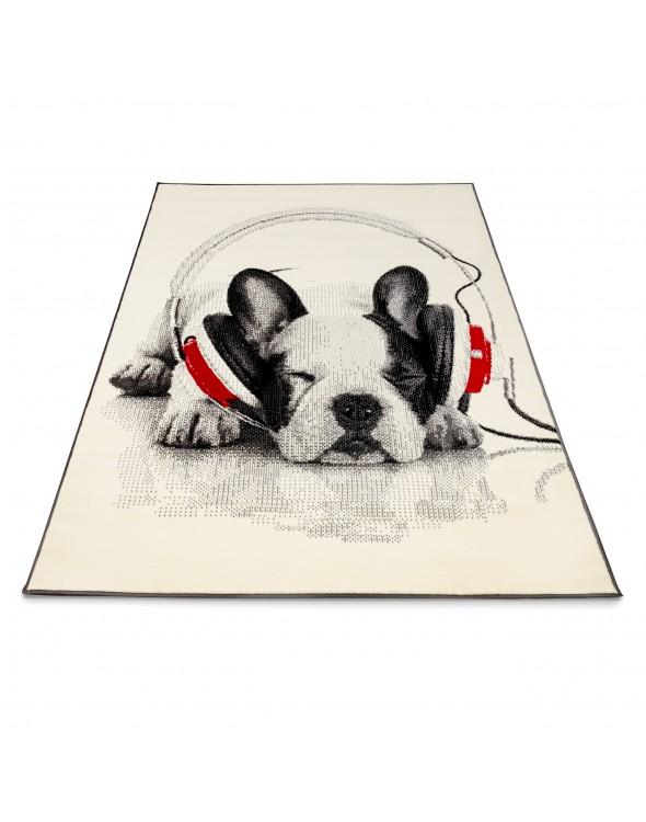 Zasłuchany w muzyce ukochany psiak:)