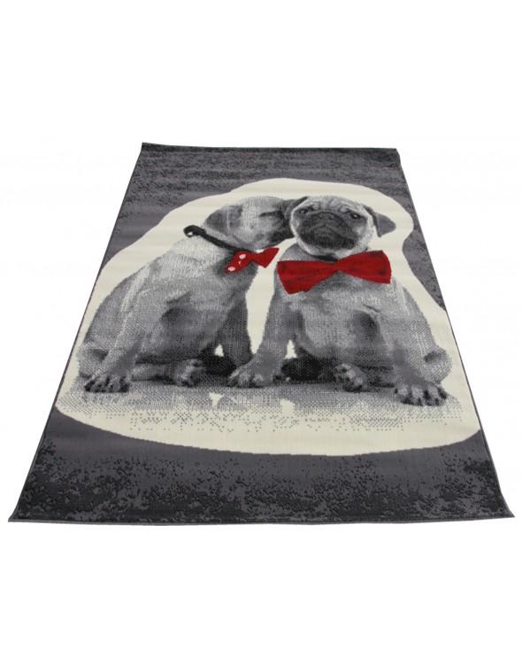 Jest to dywan polipropylenowy z kolekcji CITY.