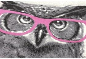 Sowy czczono jako ptaki symbolizujące mądrość.