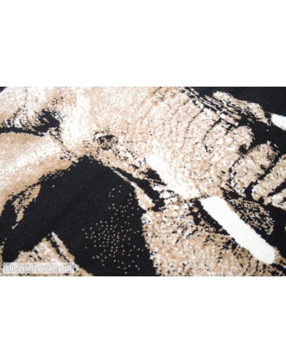 Na dywanie widnieją jasne oraz ciemne barwy.