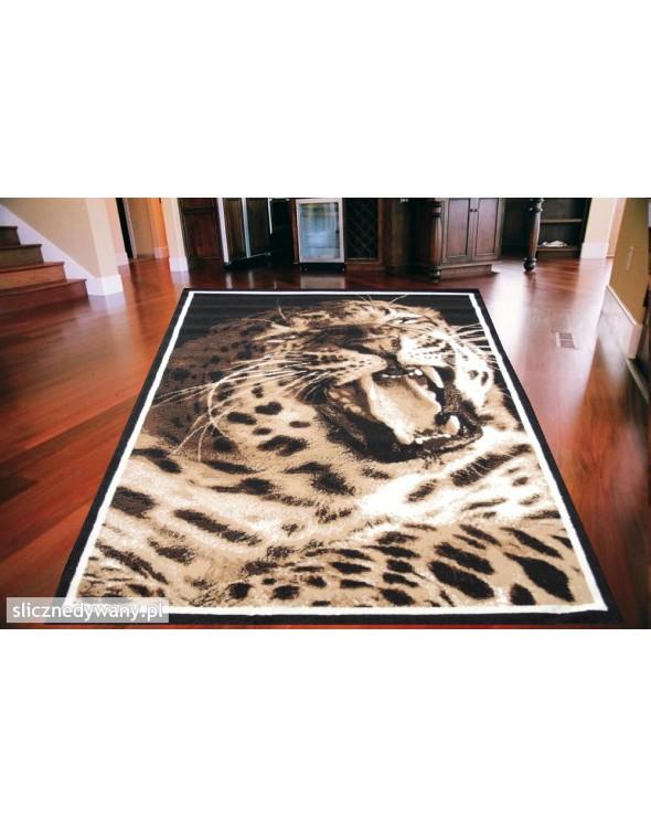 Przepiękny dywan dla dzieci i młodziezy.