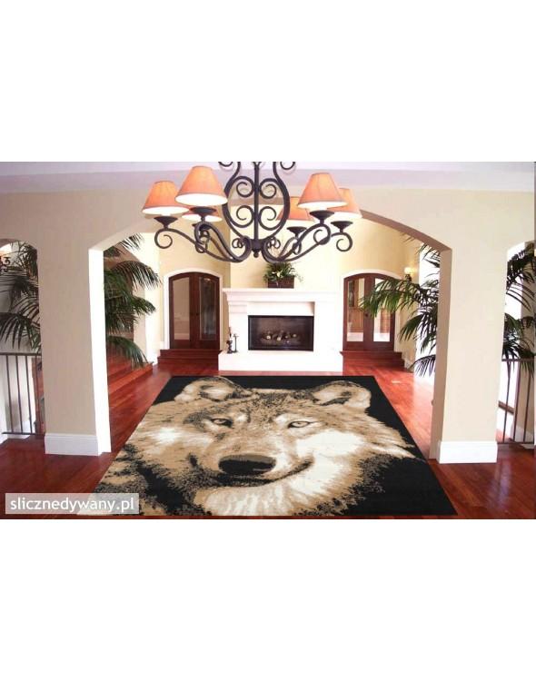Modne dywany NAIROBI.