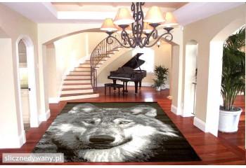 Zachęcamy do kupna dywanów z naszej kolekcji.